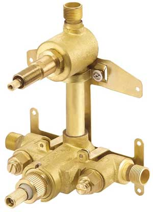 shower valve mainternance